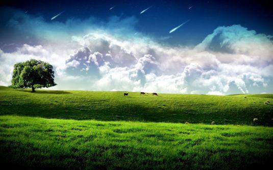 vacas-en-el-pasto-verde-1437